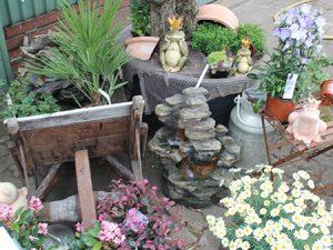 Pflanzen, Dekoration, Geschenkartikel